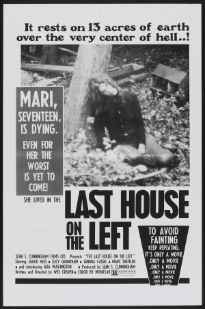 the_last_house_on_the_left