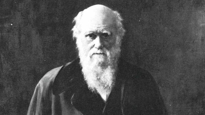 Naturalist Charles Darwin was born on February 12, 1809, in Shrewsbury, England. The originator of the theory of evolution by natural selection, Darwin served as naturalist on the H.M.S. Beagle from 1831-1836 during its scientific survey of South America and the South Pacific, using information gained from the voyage to fuel his numerous investigations. His best known work remains the 1859 book 'Origin of the Species', one of the most contentious scientific theories of the 19th century and beyond. (Credit Hulton Archive/Getty Images)