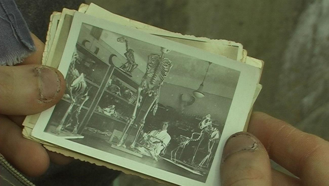 SALT Beyoğlu'nda Koleksiyon Sergisi: Her tercih diğer ihtimaller için bir dışlamadır. - Bi'Dünya, Haberler - Fil'm Hafızası